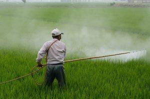 Environmental Carcinogens
